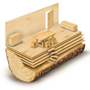 illustrazione banco legno